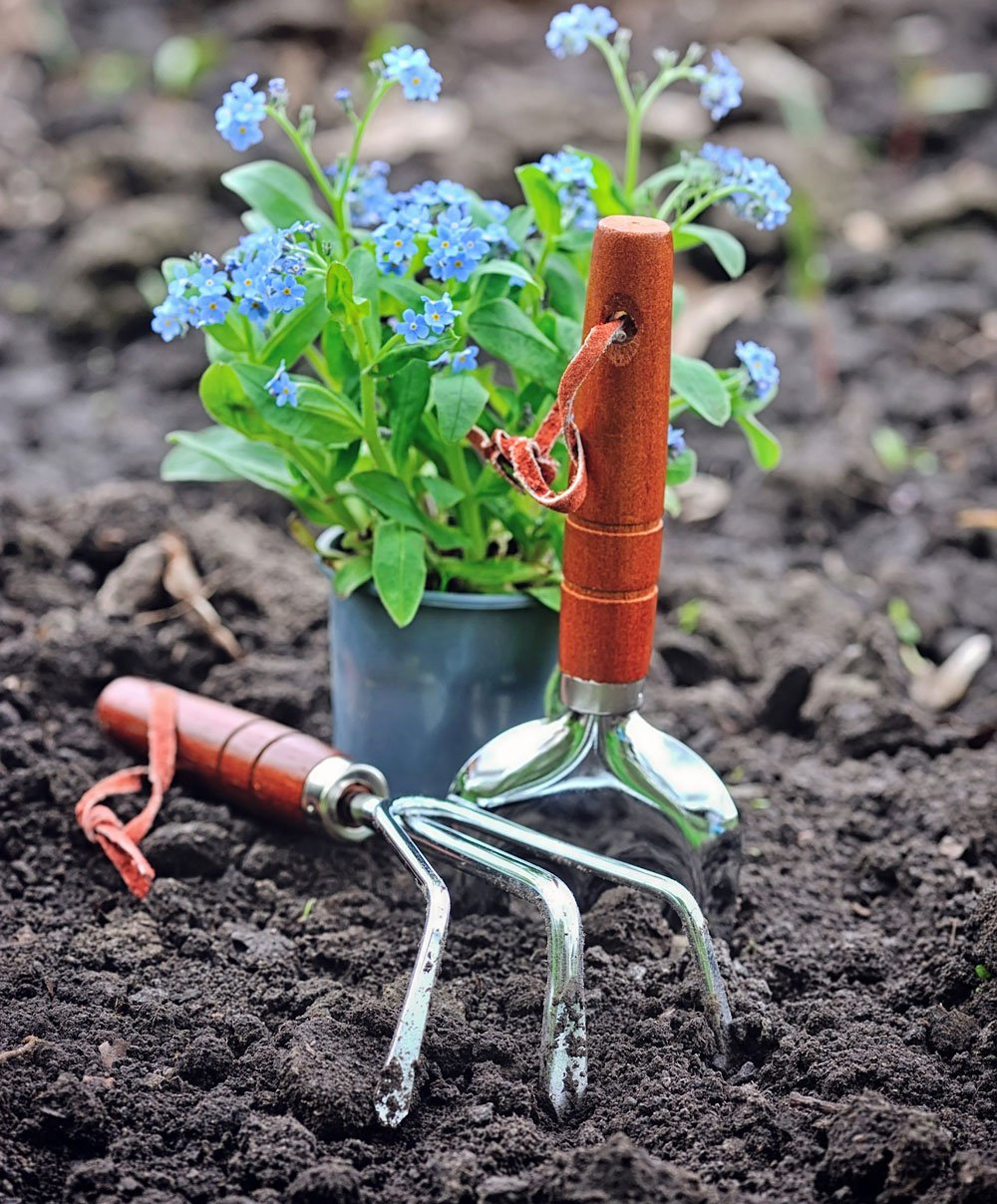gardening tools and spring